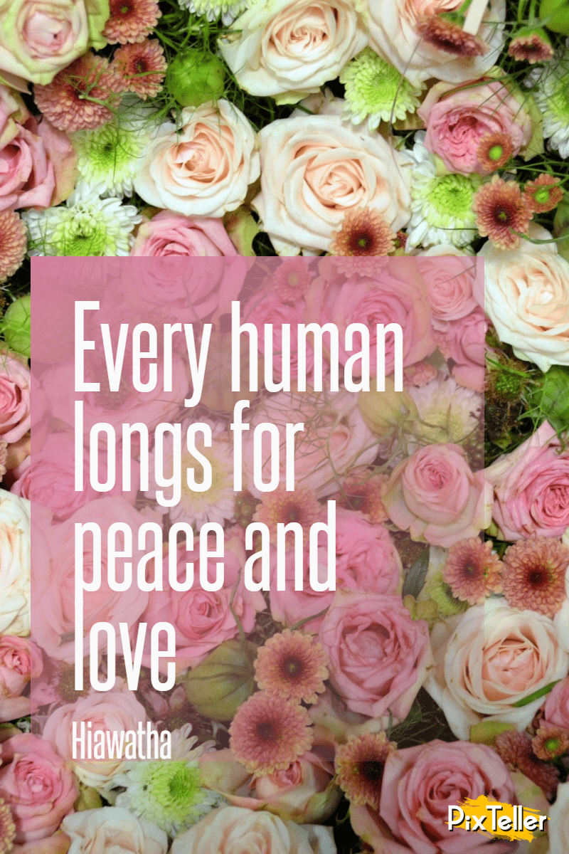 Flower,                Arranging,                Rose,                Floristry,                Pink,                Bouquet,                Family,                Flowering,                Plant,                Cut,                Flowers,                Order,                Peace,                 Free Image