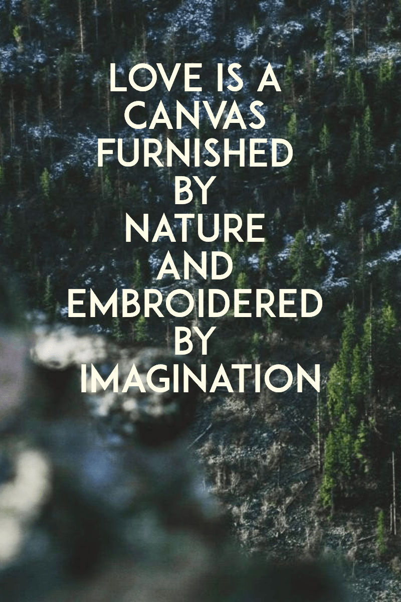 Nature,                Text,                Tree,                Font,                Forest,                Phenomenon,                Biome,                Sky,                Water,                Computer,                Wallpaper,                Black,                 Free Image