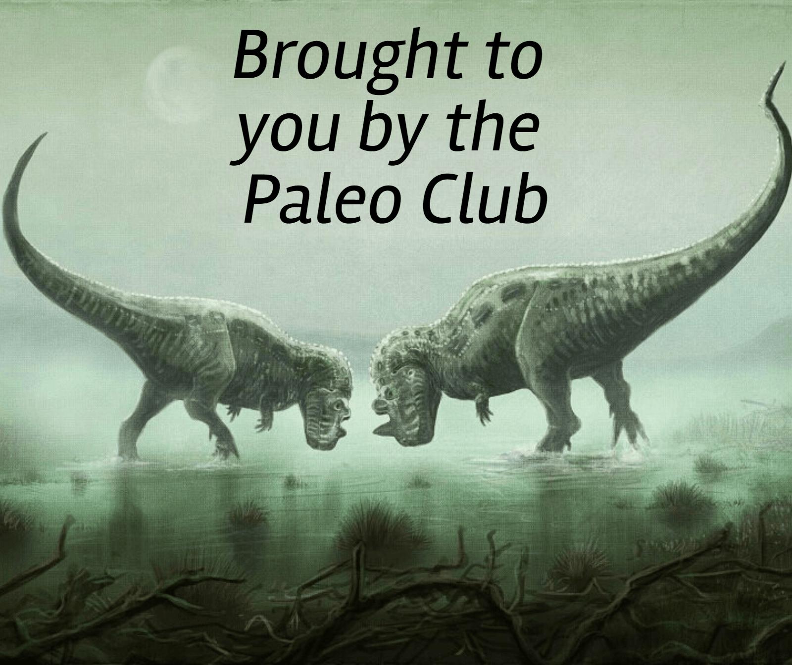 Dinosaur,                Fauna,                Extinction,                Organism,                Tyrannosaurus,                Wildlife,                Velociraptor,                Terrestrial,                Animal,                White,                Black,                 Free Image