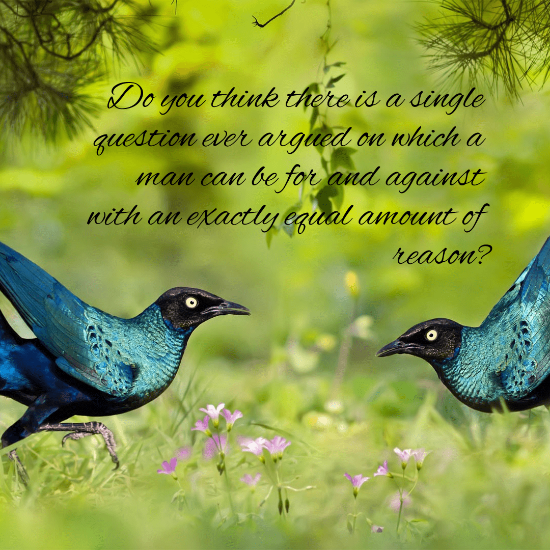 Bird,                Fauna,                Ecosystem,                Flora,                Beak,                Organism,                Wildlife,                Advertising,                Black,                Yellow,                 Free Image