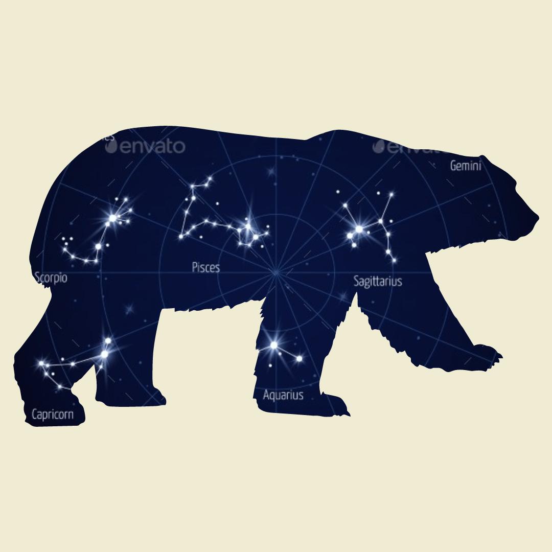 Mammal,                Bear,                Carnivoran,                Organism,                Elephants,                And,                Mammoths,                Snout,                White,                Black,                 Free Image