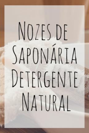 Nozes de Saponária Detergente Natural