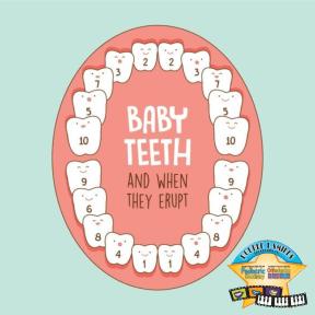 babyteethchart