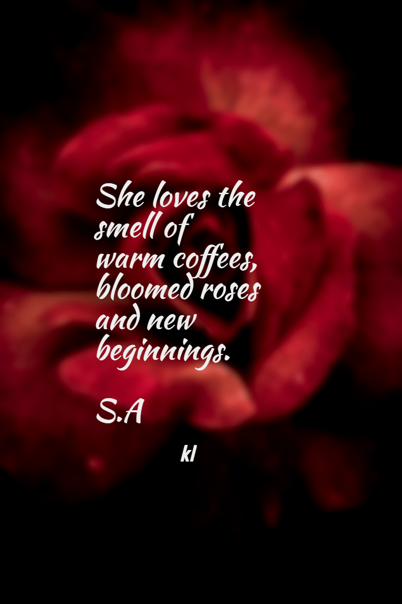 Text,                Love,                Petal,                Darkness,                Font,                Computer,                Wallpaper,                Garden,                Roses,                Valentine's,                Day,                Romance,                Rose,                 Free Image
