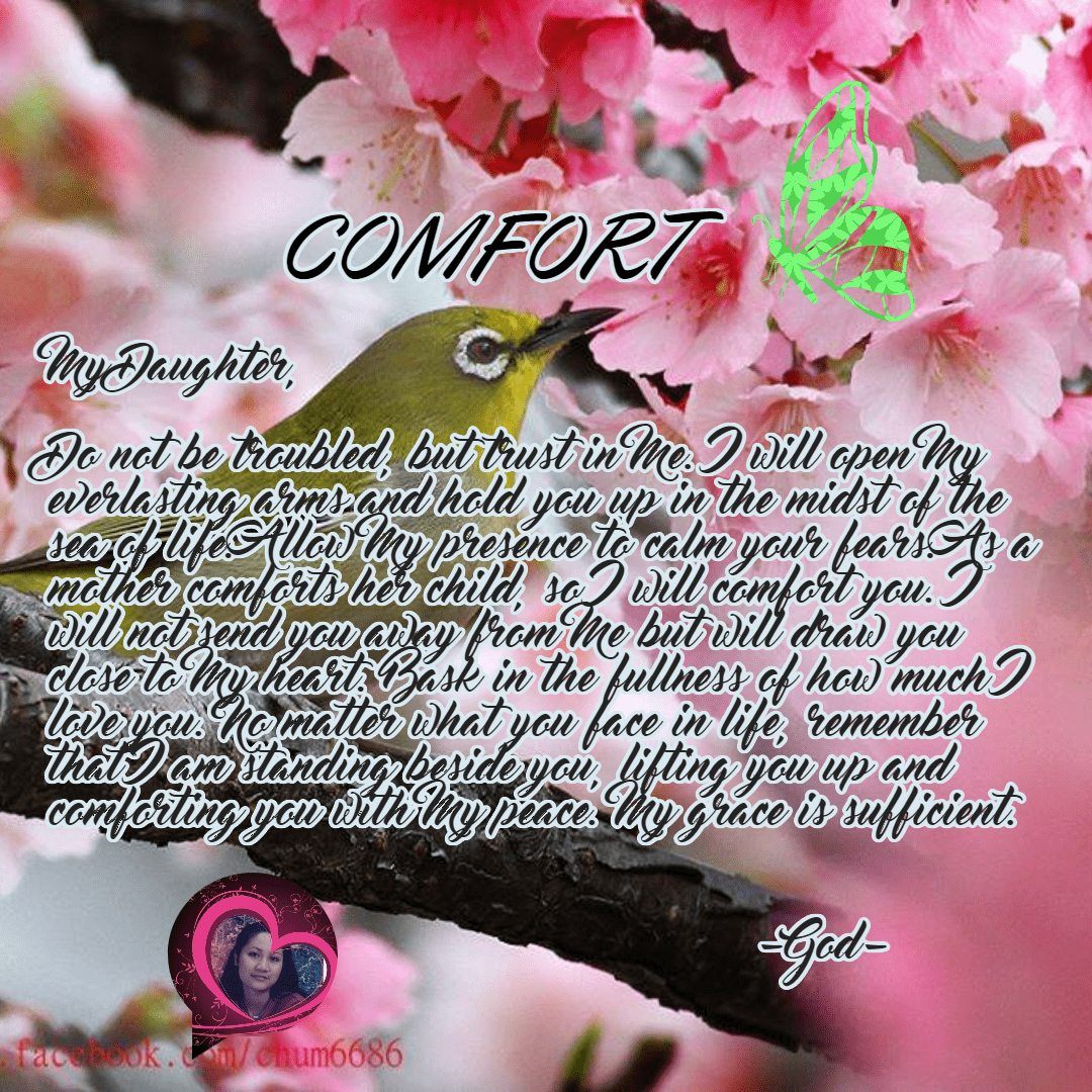 Text,                Fauna,                Organism,                Font,                White,                Black,                Red,                Fuchsia,                Yellow,                 Free Image