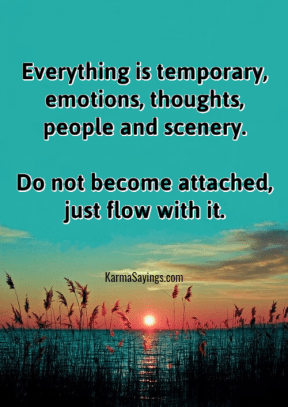 Everything is temporary, emotions, thoughts, people and scenery. Do not become attached, just flow with it.