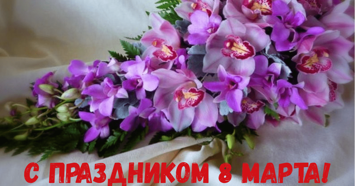 Flower,                Plant,                Purple,                Flowering,                Violet,                Arranging,                Dendrobium,                Cut,                Flowers,                Floral,                Design,                Family,                Invitation,                 Free Image