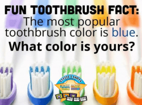 toothbrush colors