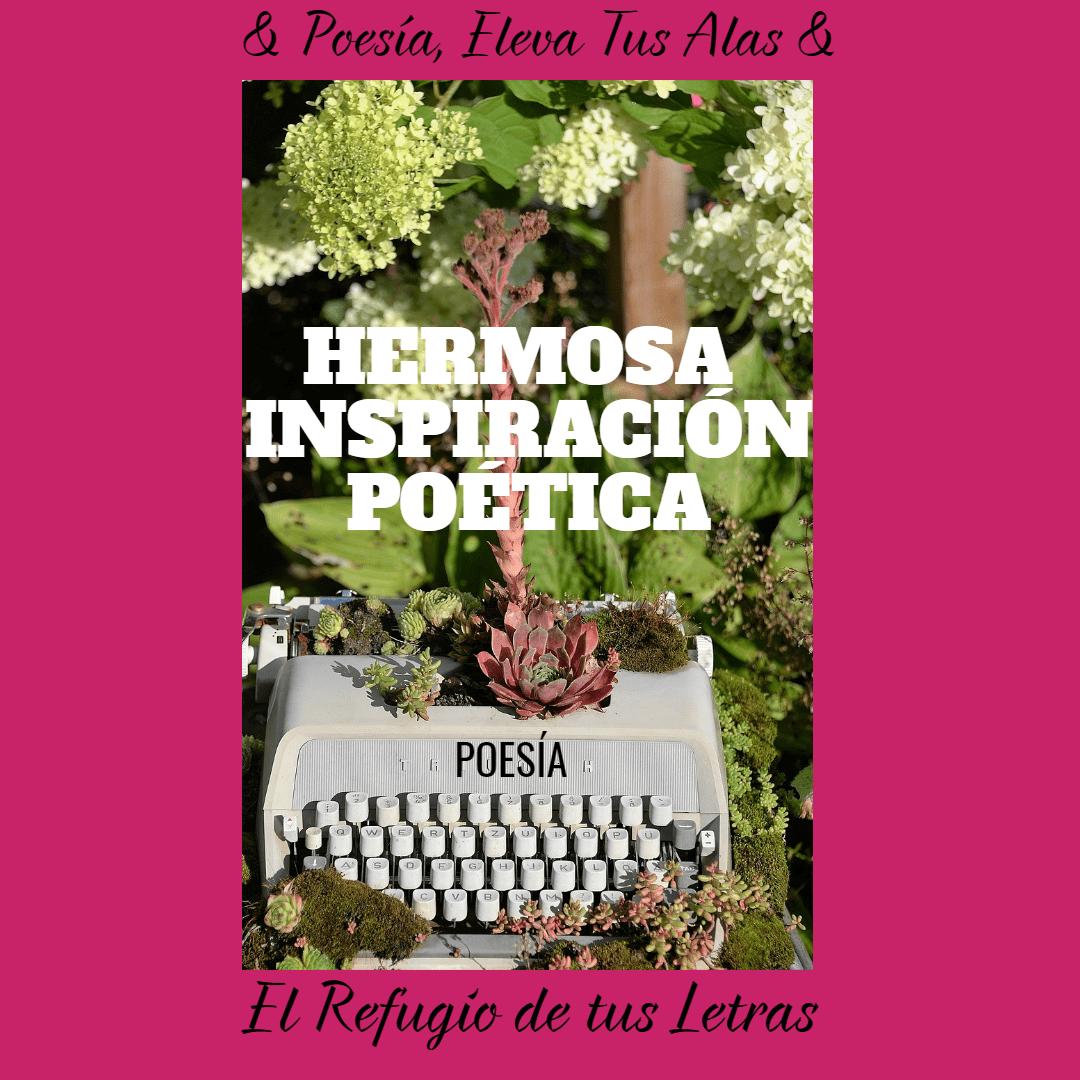 Flower,                Pink,                Flora,                Text,                Arranging,                Floristry,                Plant,                Floral,                Design,                Advertising,                Font,                White,                Black,                 Free Image