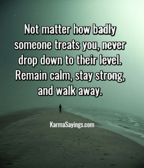 Not matter how badly someone treats you, never drop down to their level. Remain calm, stay strong, and walk away.