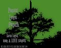panex love punch