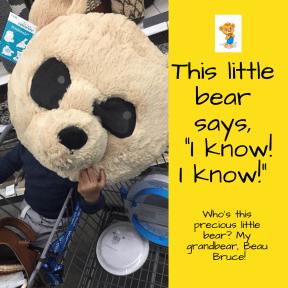 Bear Beau