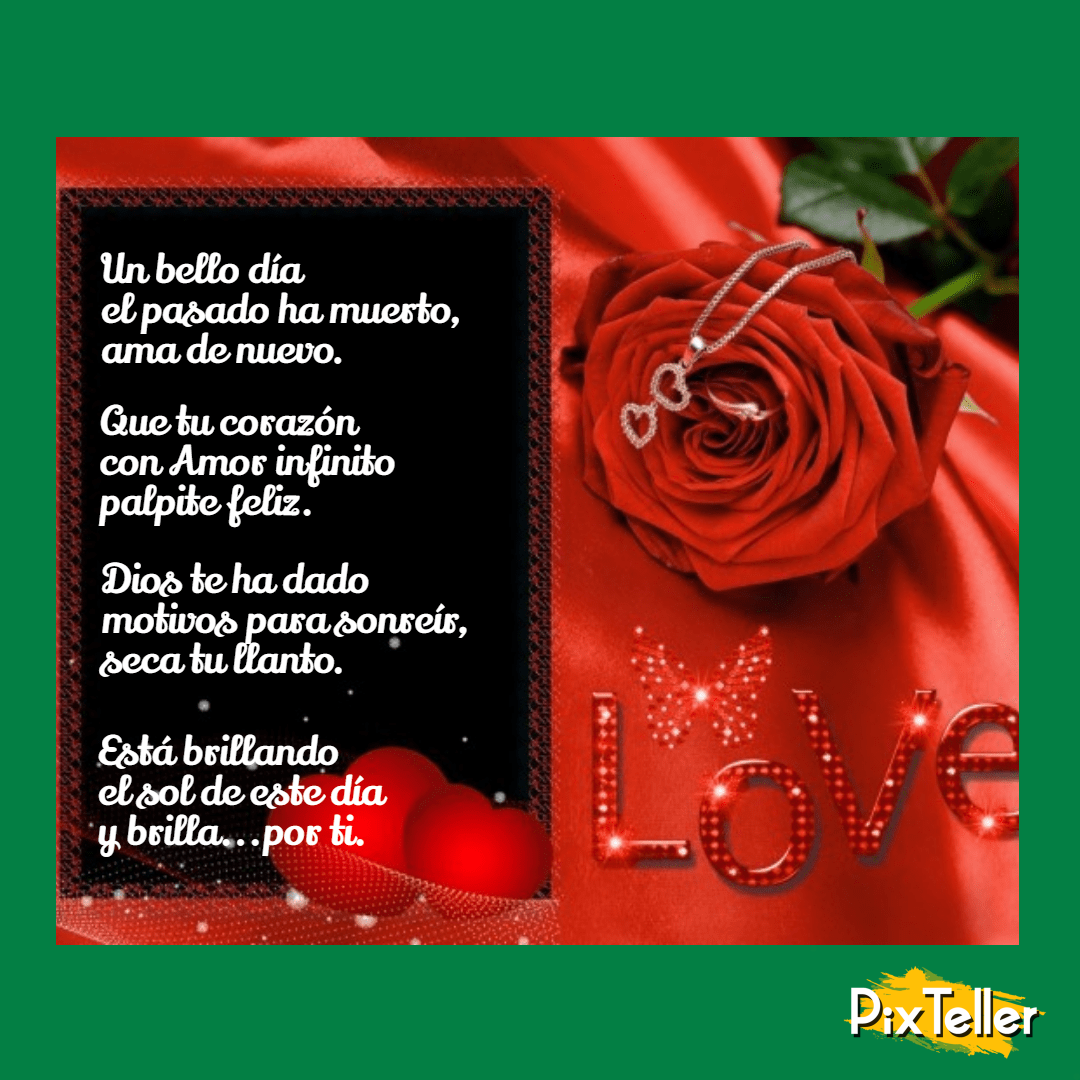 Red,                Text,                Garden,                Roses,                Flower,                Rose,                Family,                Order,                Petal,                Valentine's,                Day,                Greeting,                Card,                 Free Image