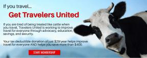 BANNER TU cattle