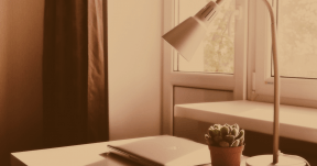 #Photo #Effects #Filters #ImageEffect #PhotoFilters #succulent #apple #lamp #home #plant #indoor #window