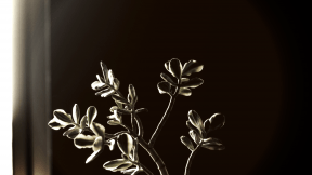 #Photo #Effects #Filters #ImageEffect #PhotoFilters #ikebana #photography #still #branch #flora