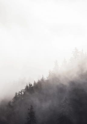 #Photo #FreePhoto #fog #white #earth #and #UNSPLASHIMAGE