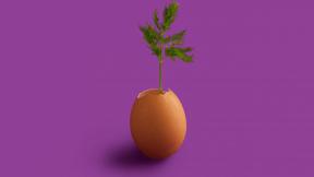 #Photo #FreePhoto #still #fruit #produce #wallpaper #life #computer #UNSPLASHIMAGE #purple