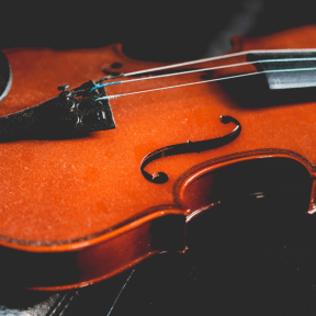 #Photo #FreePhoto #violinist #UNSPLASHIMAGE #A #instrument #musical #instrument #close-up #with