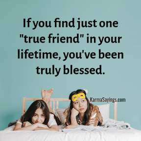 """If you find just one """"true friend"""" in your life time, you have been truly blessed."""