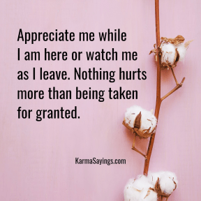 Appreciate me while I am here or watch me as I leave. Nothing hurts more than being taken for granted.