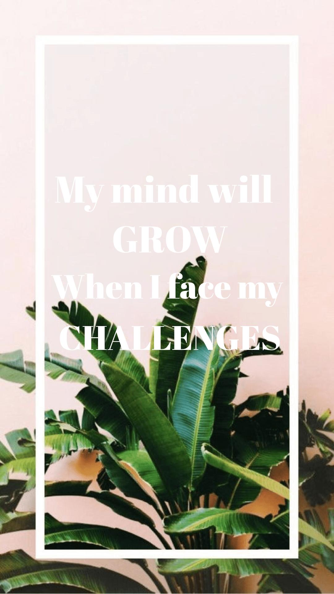 Plant,                Leaf,                Grass,                Flowerpot,                Font,                White,                Black,                 Free Image