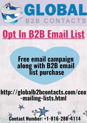 Opt In B2B Email List