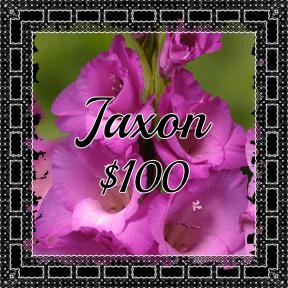 Jaxon Purple