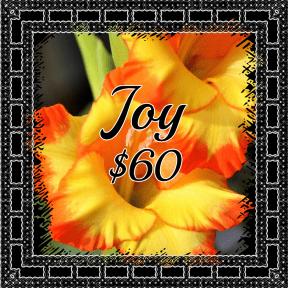Joy yellow
