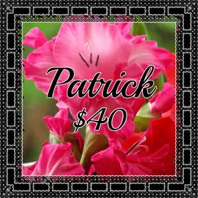 Patrick T pink
