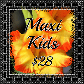Maxi Kids yellow