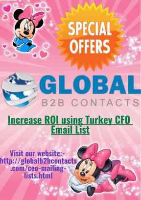 Increase ROI using Turkey CFO Email List
