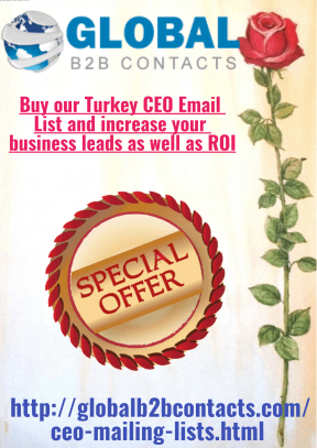 Buy our Turkey CEO Email List and increase your business leads as well as ROI