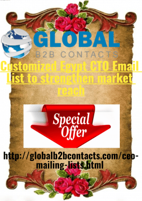 Customized Egypt CTO Email List to strengthen market reach