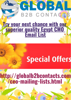 Try your next chance with our superior quality Egypt CMO Email List