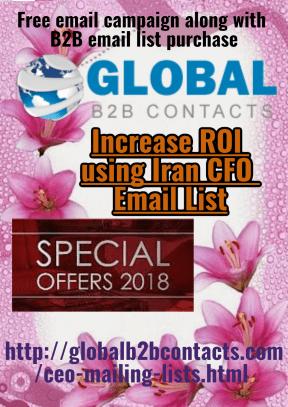 Increase ROI using Iran CFO Email List