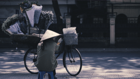 #PhotoEffect #Photo #PhotoFilter #Effects #Filters #Photography #street #various #rice #flowers #mode #with #sitting