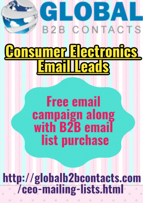 Consumer Electronics Email Leads