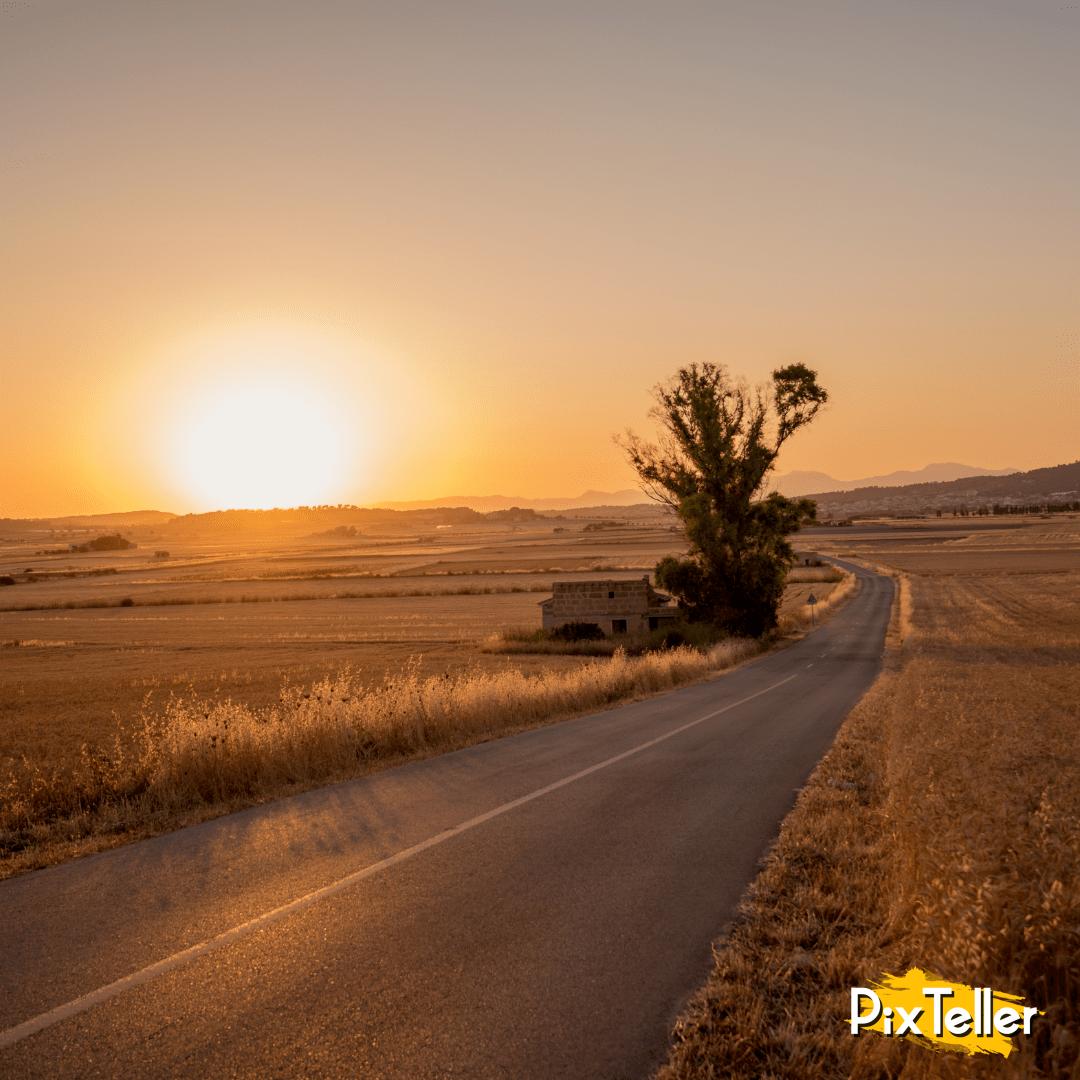 UNSPLASHIMAGE,                Sunlight,                Horizon,                Road,                Sunrise,                Ecoregion,                Landscape,                Morning,                Ecosystem,                Sky,                Plain,                Photo,                FreePhoto,                 Free Image
