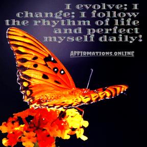 I-evolve-I-change-I-follow