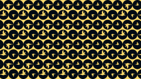 HD Pattern Design - #IconPattern #HDPatternBackground #animals #animal #shapes #round #bird #america #circles #circular #Trochilinae
