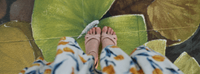 Photo - #Photography #Photo #butterfly #green #painting #sandals' #standing #leaf #plant #water