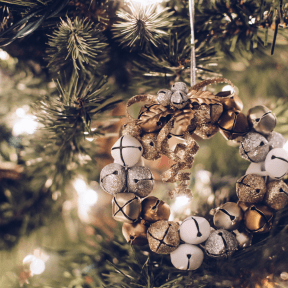 Photo - #Photography #Photo #christmas #family #fir #tree #pine #decoration #ornament #branch #conifer