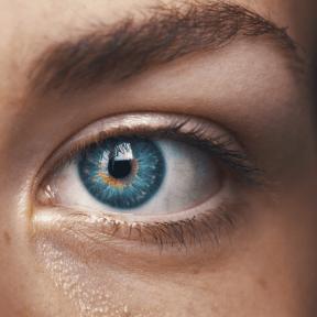 Photo - #Photography #Photo #close #ophthalmology #shadow #eyelash #eyebrow #organ #iris #eye #forehead