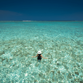 Photo - #Photography #Photo #shore #ocean #vacation #stretching #into #clear #lagoon #caribbean #reef #white