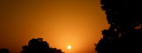Photo - #Photography #Photo #horizon #silhouette #phenomenon #Trees #sunset. #sun #atmosphere #hazy