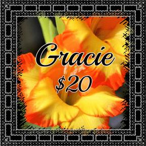 Gracie yellow