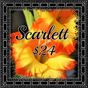 Scarlett yellow