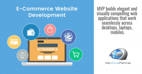 MVP Development Services