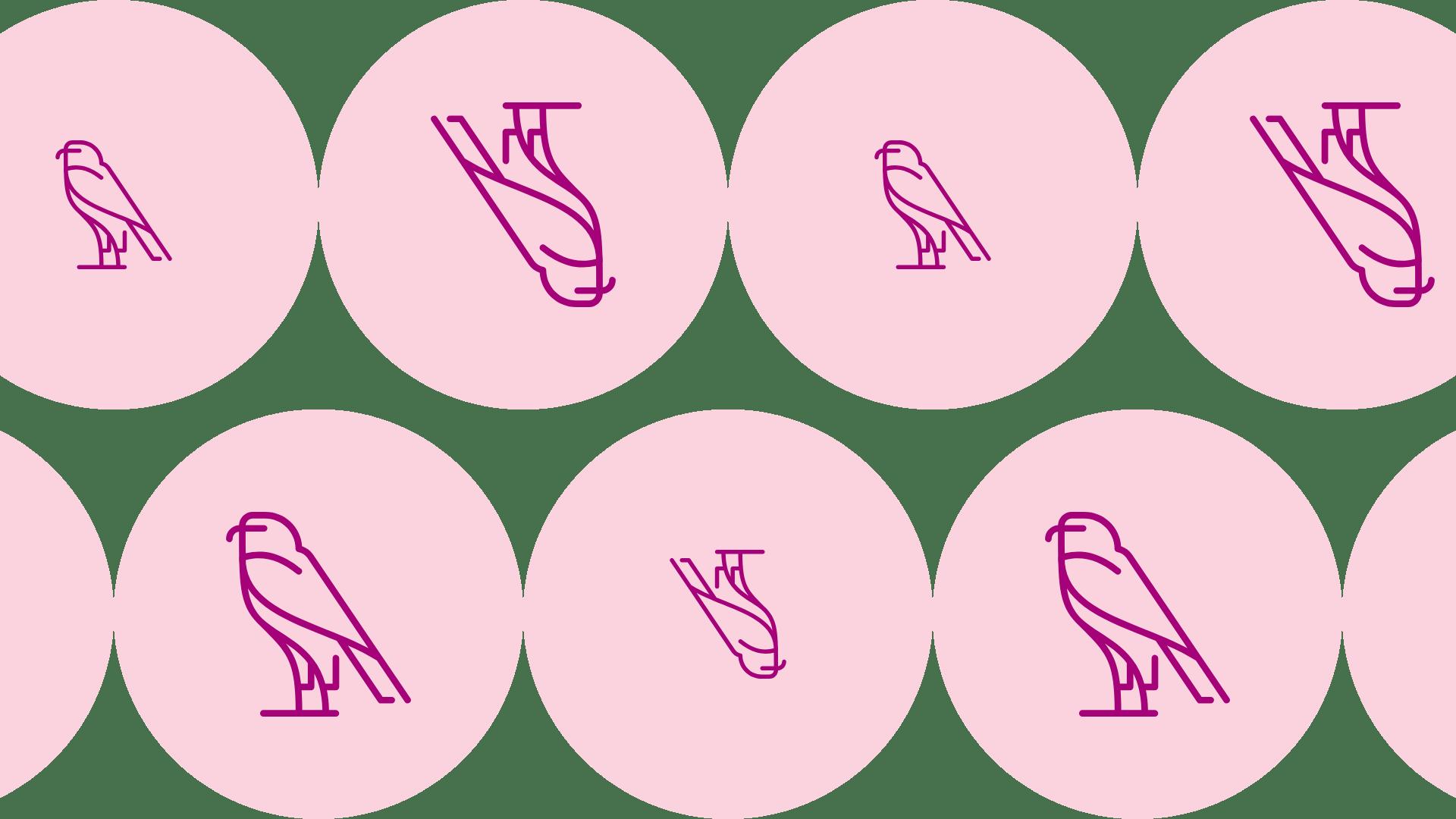 Pink, Lip, Magenta, Font, Design, Smile, Pattern, Graphics, Black, Animal, View, Drum, Music,  Free Image